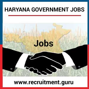 Latest Govt Jobs in Haryana   Apply for Haryana Govt Jobs 2018 19   Haryana Employment