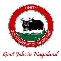 1106 Govt Jobs in Nagaland 2017   Upcoming Jobs in NIT Nagaland University   Nagaland PSC Recruitment 2016