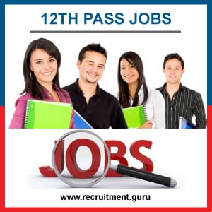 12th Pass Govt Jobs 2021 | Apply for 59,000 Sarkari Jobs for 12th Pass Students